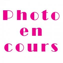 Boulettes de Poisson x3...